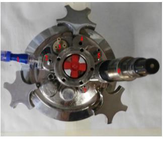 Fig.1 Port position on bioreactor's headplate